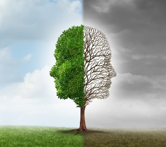 Human emotion and mood disorder as a tree shaped as two human faces with one half empty branches and the opposite side full of leaves in the summer as a medical metaphor for psychological issues pertaining to contrast in feelings.