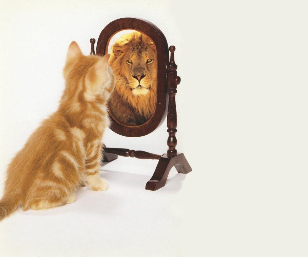 La importancia de la autoestima en los niños | Unipsiquia